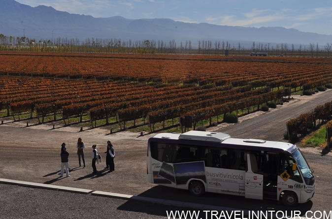 Wine Tourism mendoza hop on hop off wine tour in mendoza - 5 Best Wineries In USA To Visit - US Wine Tours