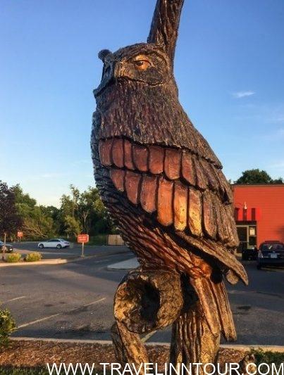 Orangeville Tree Sculptures - Orangeville Things to Visit & Experience