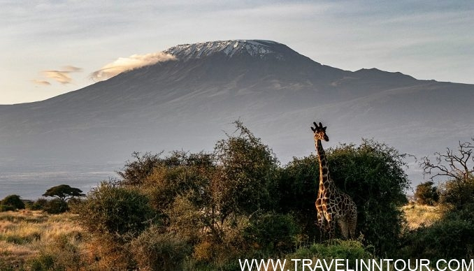 Mount Kilimanjaro Kenya e1565033701439 - 10 Best Places To Visit Once In A Lifetime