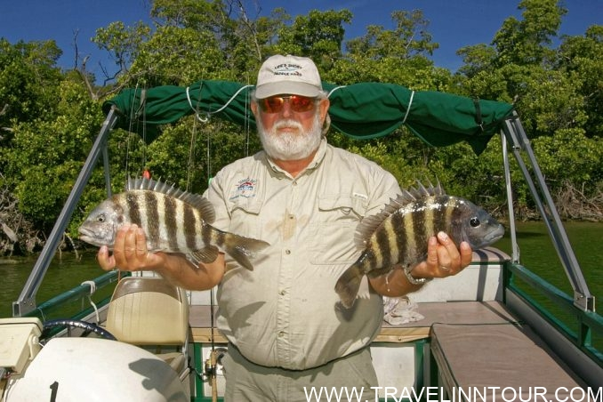best fishing destinations in Canada e1565375909437 - Top 3 Fishing Destinations in Canada