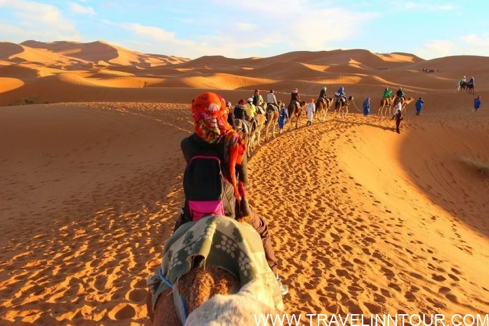 Desert Safari Camel Adventure Tour e1576805756508 - 19 Best Vacation Destinations With Family Around The World