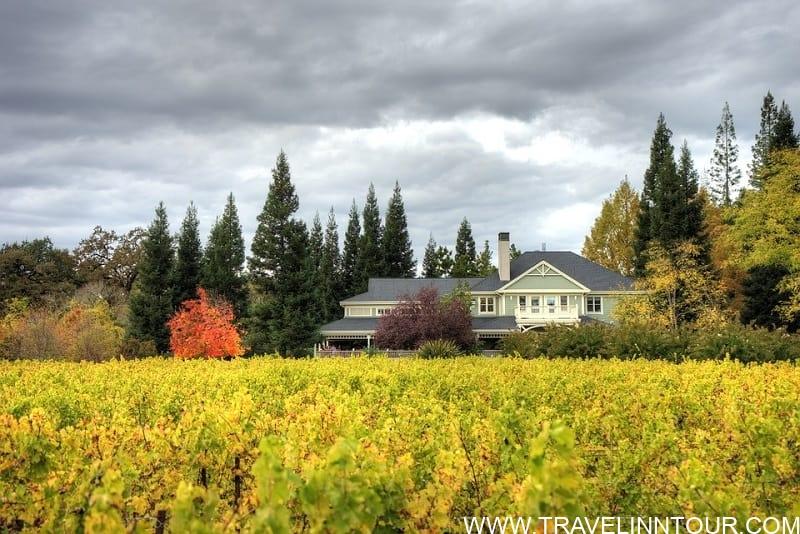 Duckhorn Vineyard - 5 Best Wineries In USA To Visit - US Wine Tours