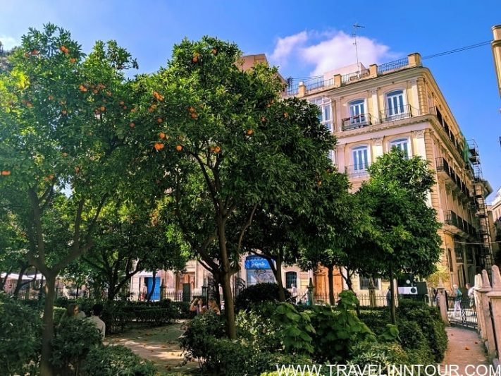 valencia travel guide top things to do and see in valencia