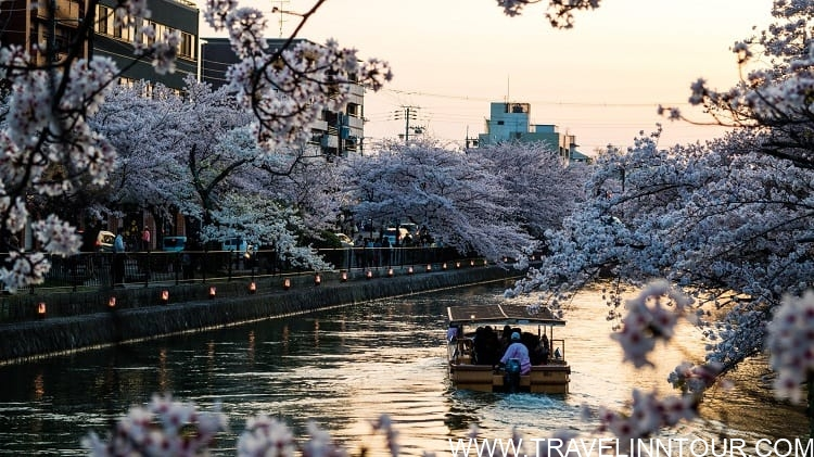 Sunset Cruise in Kyoto