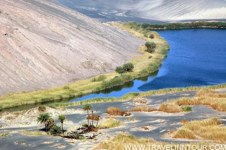 Wau en Namus Vegetation surrounding one of the lakes at Waw an Namus 1