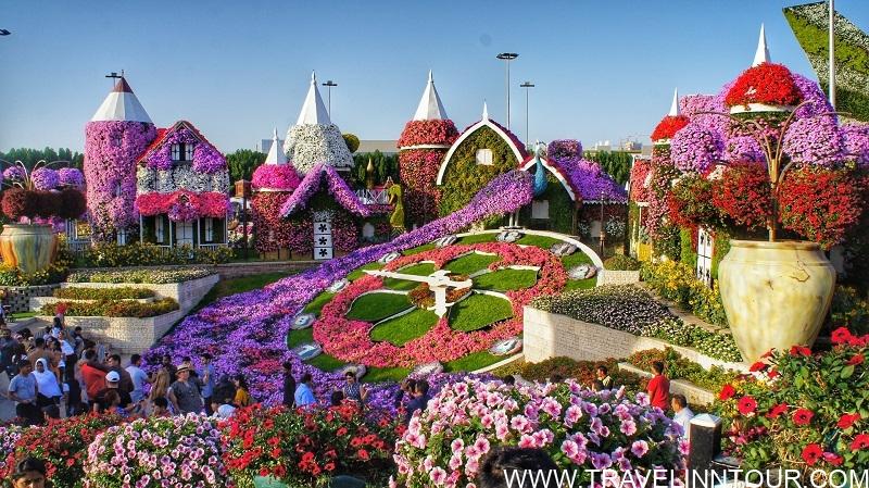 Dubai Miracle Garden Or Dubai Flower Garden