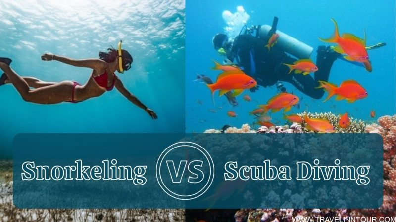 Snorkeling VS Scuba Diving What is the difference
