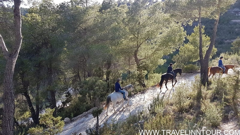 Ibiza Horse Valley