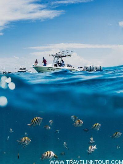 A Fishing Trip In Seychelles
