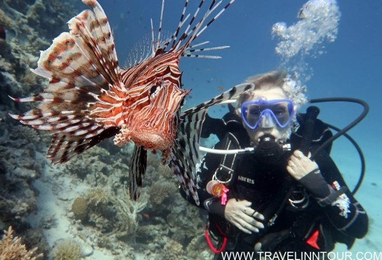 SCUBA Diving - Albufeira Boat Tours
