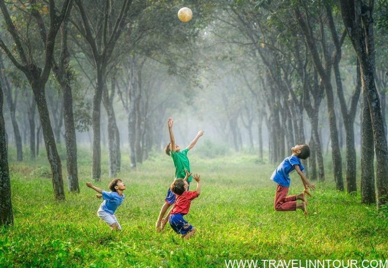 Activities for Kids Family Attractions In Ubud