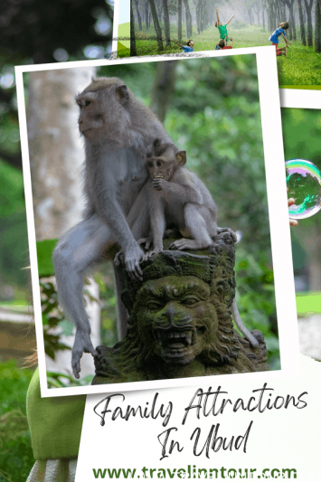 What to Do in Ubud with Family 1